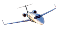 Flight Options Legacy 600
